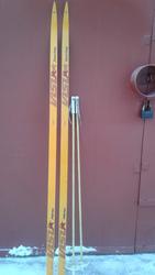 продаем лыжи беговые пластиковые новые с палками Про-во россия